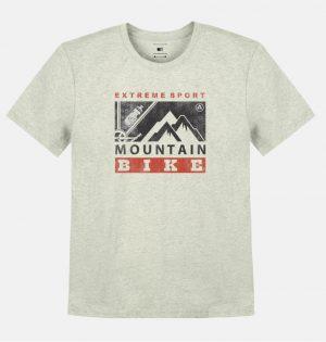 Camiseta Mescla Estampa Mountain
